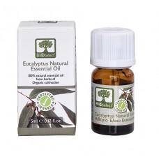 Bioselect Eucalyptus - Certified Organic